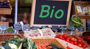 Sur-marges sur les fruits et légumes bio